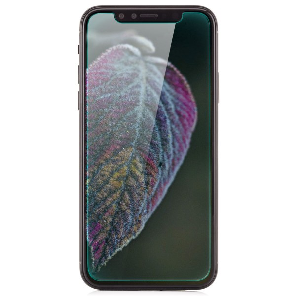Displayschutzglas für Apple iPhone X
